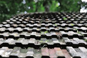 Antibacterial Roof