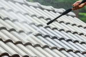 Roof Cladding Cleaning